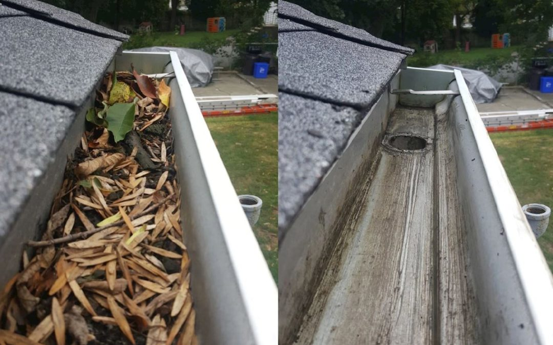 Reasons You Should Hire A Professional Gutter Cleaning Services