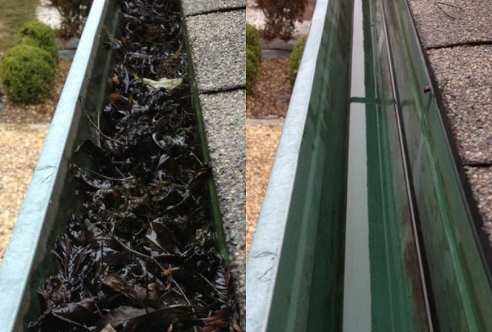 When Should You Have Your Gutters Cleaned?