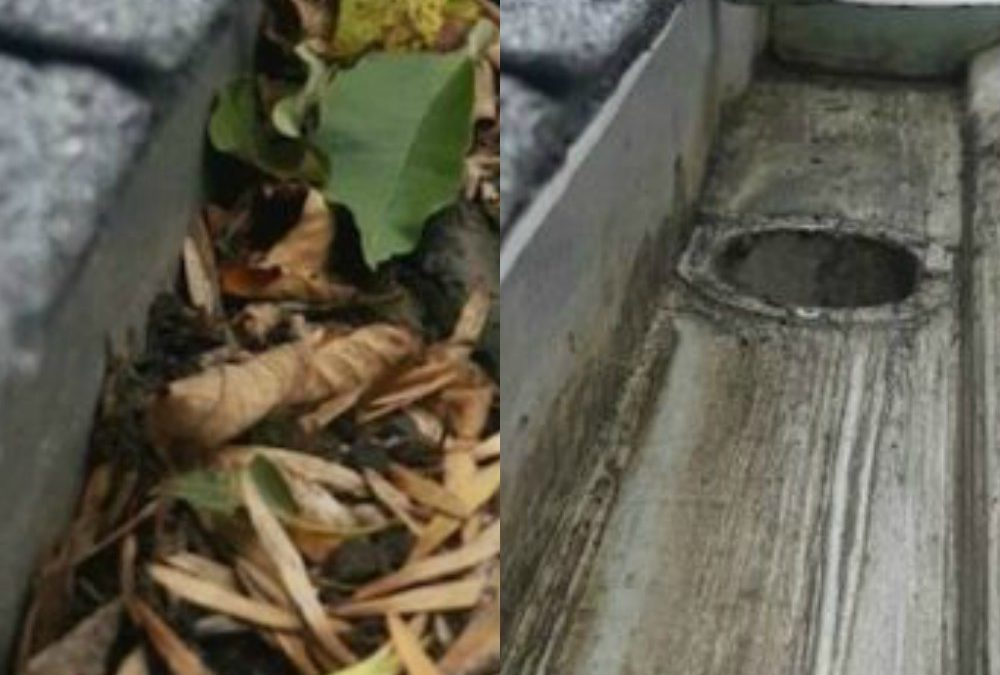 Information On How Our Specialist Gutter Cleaning Company Makes Your Gutters Shine